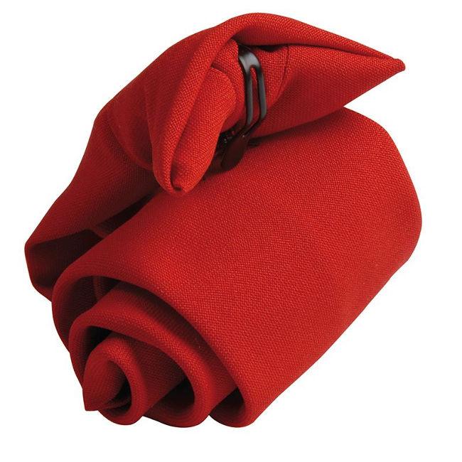 Clip On Tie - PR710 - £15